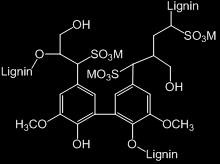 (Biorefinery) Some commercially available, but no current lignin production Steam explosion (eg. Biochemtex, Abengoa) Organosolv lignins (eg.