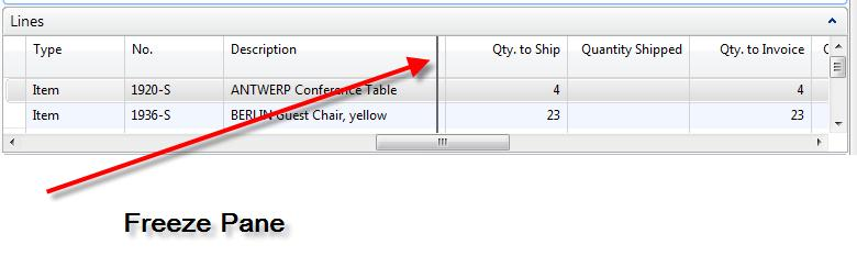 10. Lock Left Column effect on Lines (Classic) will be replaced by Freeze Pane in NAV 2009 RTC. 11.