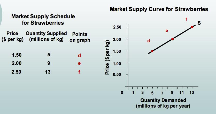 2.2 SUPPLY 2.4 MARKET EQUILIBRIUM Market supply: Price of t-shirt Market Demand Market Supply Shortage/ Surplus $20 16 0-16 $24 12 4-8 $28 8 8 0 $32 4 12 +8 $36 0 16 +16 2.4 MARKET EQUILIBRIUM 2.