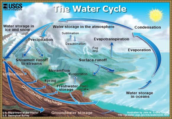 The Hydrologic (or water) Cycle describes the distribution of water