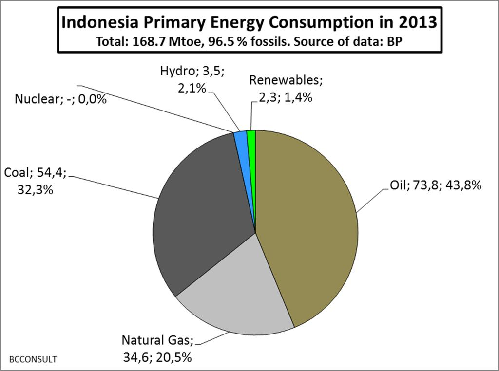Indonesia: primary energy supplies in 2013