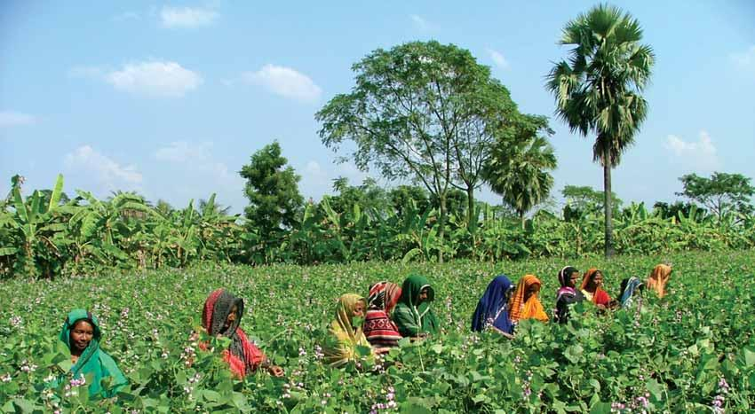 A vast majority of the poor exists in the rural areas of Bangladesh. They are so poor that it is difficult for them to access any formal financial organization.