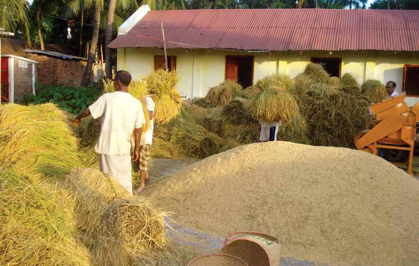 The total number of marginal and small farmers of Bangladesh is around 6.4 million and they operate in 37% of the total agricultural area in Bangladesh.