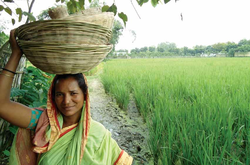 Microfinance for Marginal and Small Farmers Continuing its incessant efforts to meet the credit needs of the poor farmers, PKSF, in the year 2005, embarked upon a project titled Microfinance for