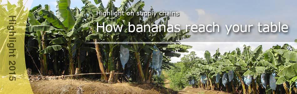 Overview In this Supply Chain Highlight, we provide an overview of the supply chain of each product we handle.