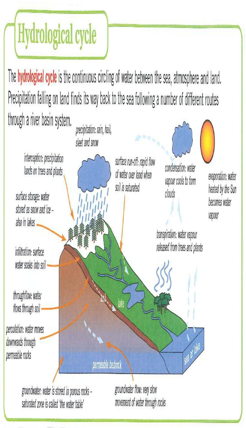 Water World Input: Precipitation Outputs: Transpiration, Evapotranspiration, rivers (carrying water to the sea) Transfers: Stemflow, surface runoff, throughflow, infiltration, percolation,