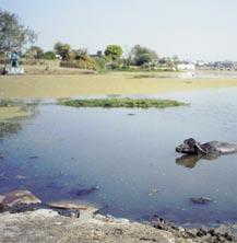 This was converted into a regular water body by King Laka Bangara by providing a waste weir in 16th century. Earlier, it had an area of 580 ha and a maximum depth of about 18.0 m.
