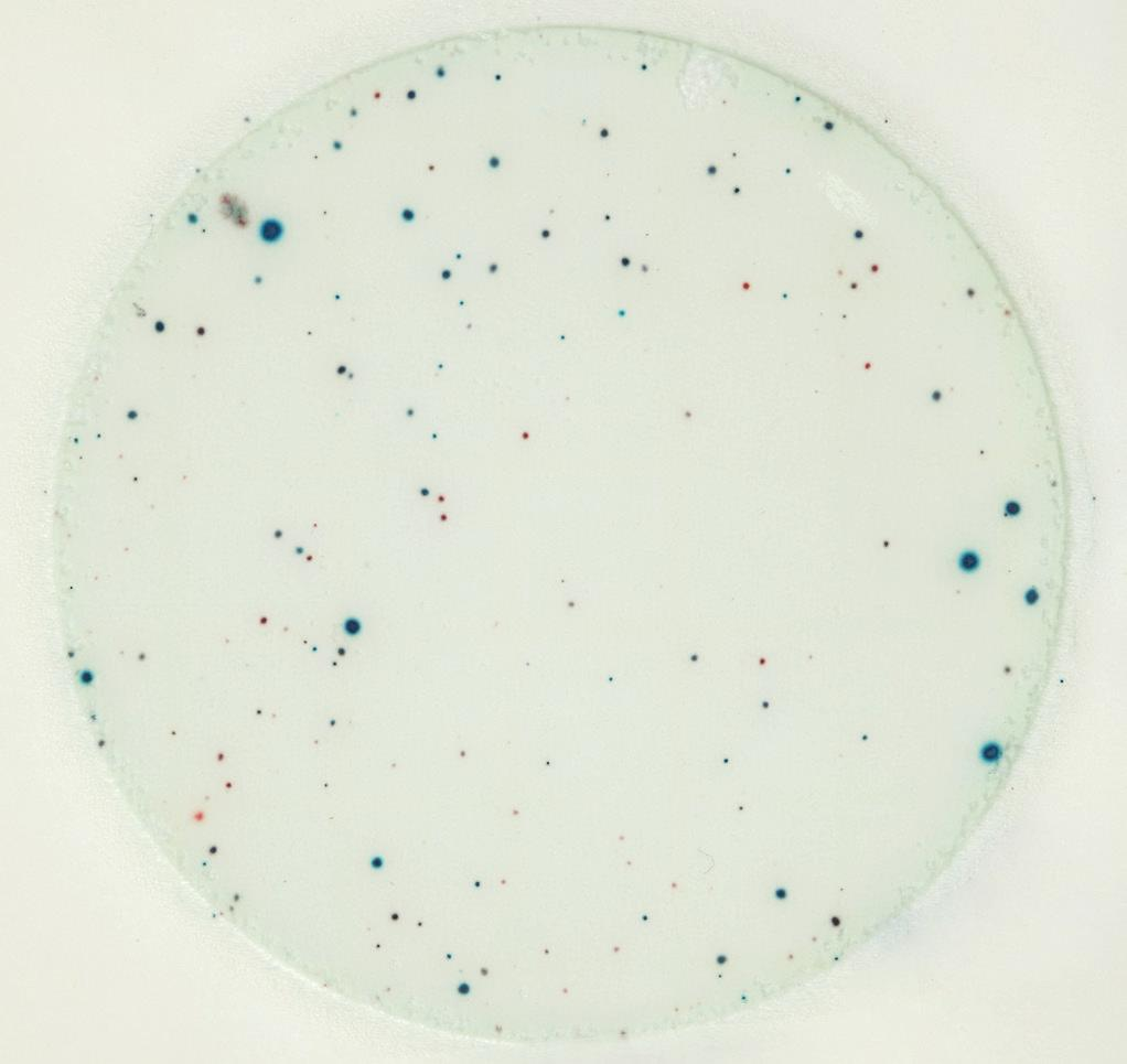 temperatures less than or equal to -15 C (5 F) for no longer than one week. Figure 1 Aerobic Bacteria Count = 88 Blue and red indicator dyes in the plate color the colonies.