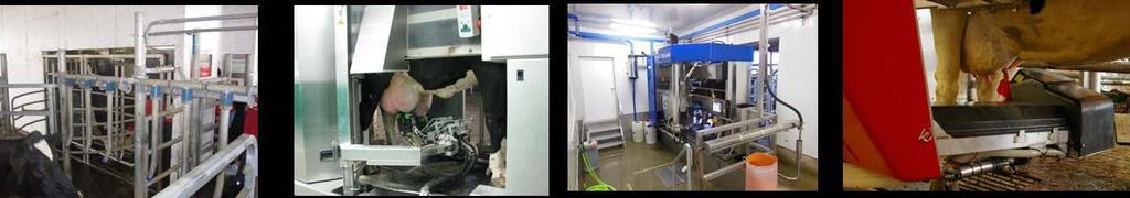 Development of Robotic Milking Robotic milking systems first became commercially available in 1992 in Europe.