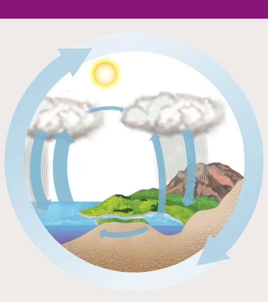Biogeochemical Cycles The water cycle and the carbon cycle THE WATER CYCLE THE CARBON CYCLE Solar energy Net movement of