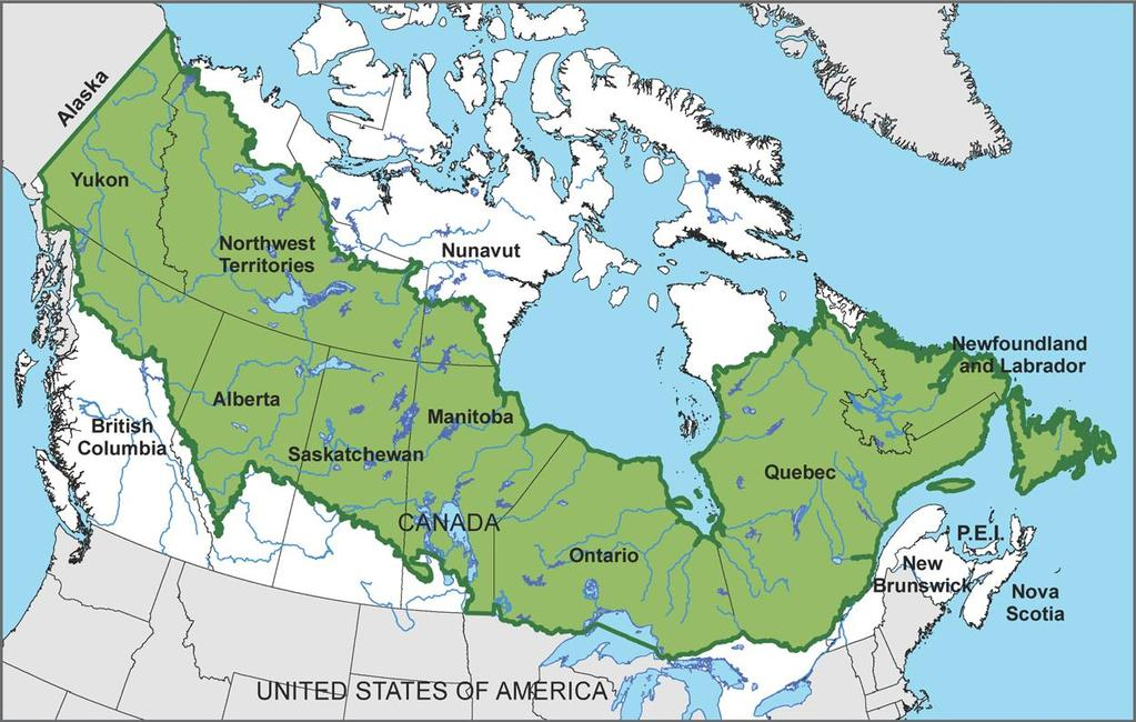 Canada s Boreal Forests are a massive carbon sink The report said the 208.