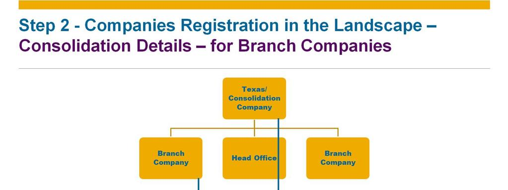 When you are registering a branch company you should also define the consolidation details. In the presented example you can see the details of the California branch.