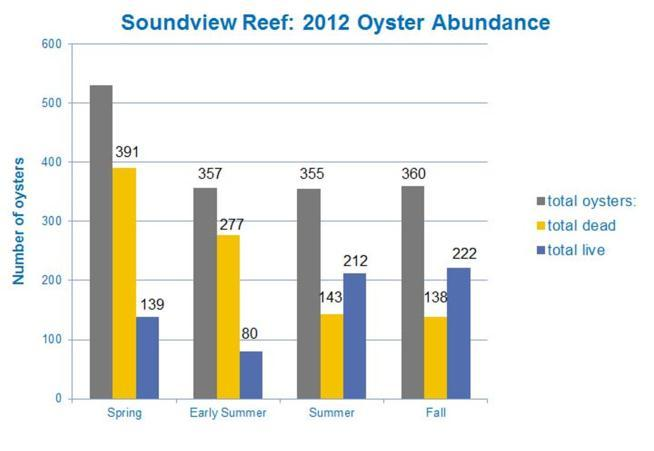 P a g e 11 Sampling on the original reef footprint showed good over-winter survival (139 total live oysters in spring 2012; Fig. 12) and substantial summer 2012 recruitment.