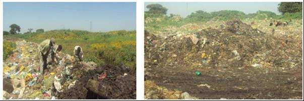 Recycling and recovery: The recycling of the solid waste is insignificant (<1%).