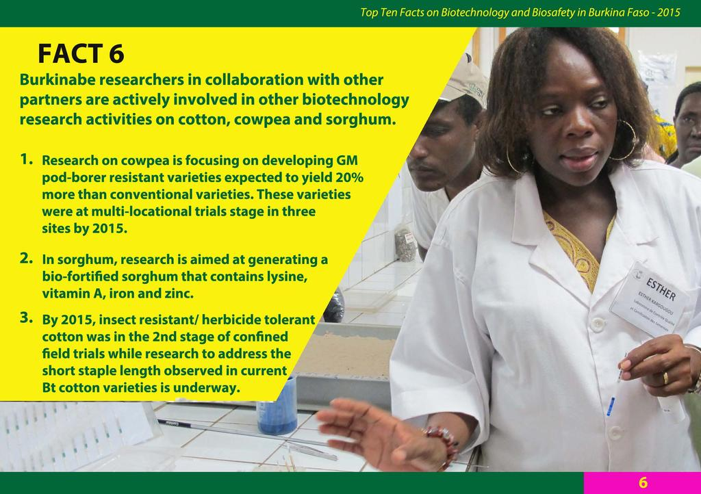 FACT 6 Burkinabe researchers in collaboration with other partners are actively involved in other biotechnology research activities on cotton, cowpea and sorghum. 1.