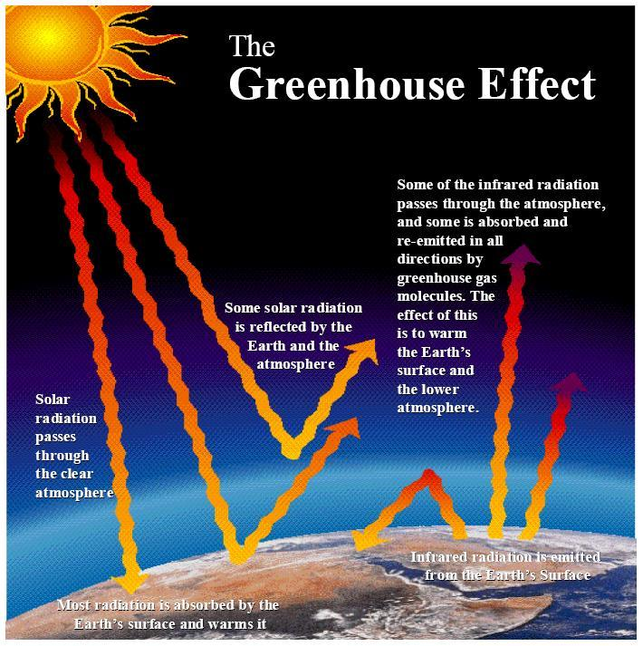Case Study Do Greenhouse Gases and Human Activities Affect Climate Change? Carbon dioxide, water vapor, nitrous oxide, and methane are naturally occurring gases in the Earth s atmosphere.