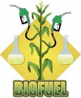 Alcohol Liquid fuel derived from biomass. Created by the fermentation of fruit, grain or agricultural waste.