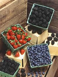 Organic Berry Acres Washington State 1,4 1,2 1, Acres 8 6 4 Canefruit 2 Blueberry expanding: at 93 ac certified and >2 transition ac in 21