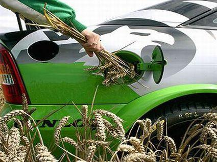 What is Biofuel?