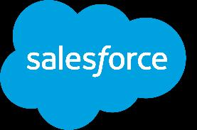 SALESFORCE SERVICES Implementation Customization Force.