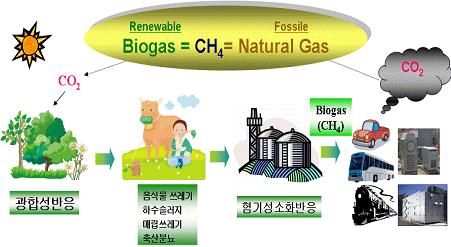 4. Waste to energy technologies Organic waste to energy Bio-gas Bio-gas is made by livestock manure, food waste, sewage sludge, organic MSW(Municipal Solid Waste), and organic industrial