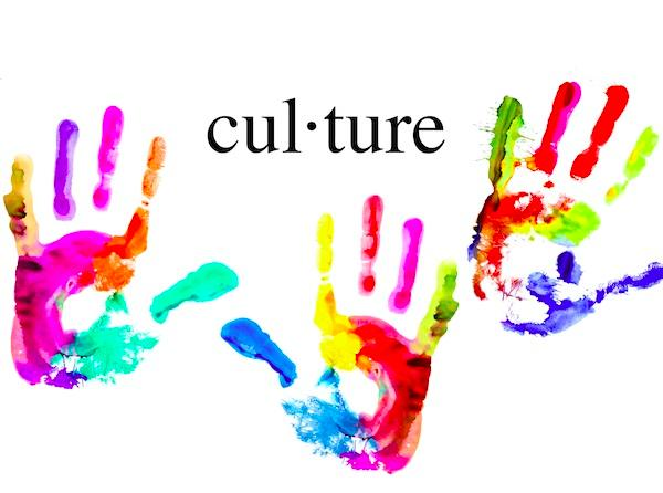 The Virtual Culture The virtual culture is in many ways the most radical of the six cultures as it represents a significant change in the role of higher education in a globalized world.