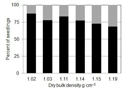 EFFECT OF SOIL BULK DENSITY ON FOREST TREE SEEDLINGS 73 a b Fig. 4.