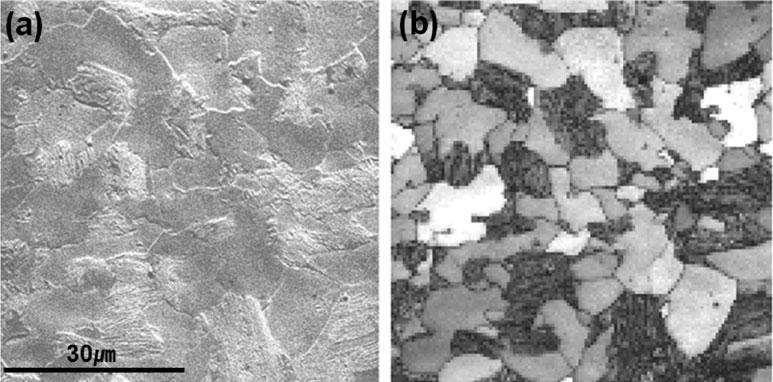 84 Suk Hoon Kang et al. Figure 1. a: Scanning electron microscope micrograph and ~b! electron back-scattered diffraction band contrast of Fe 1.3Mn 0.3C dual-phase steel.