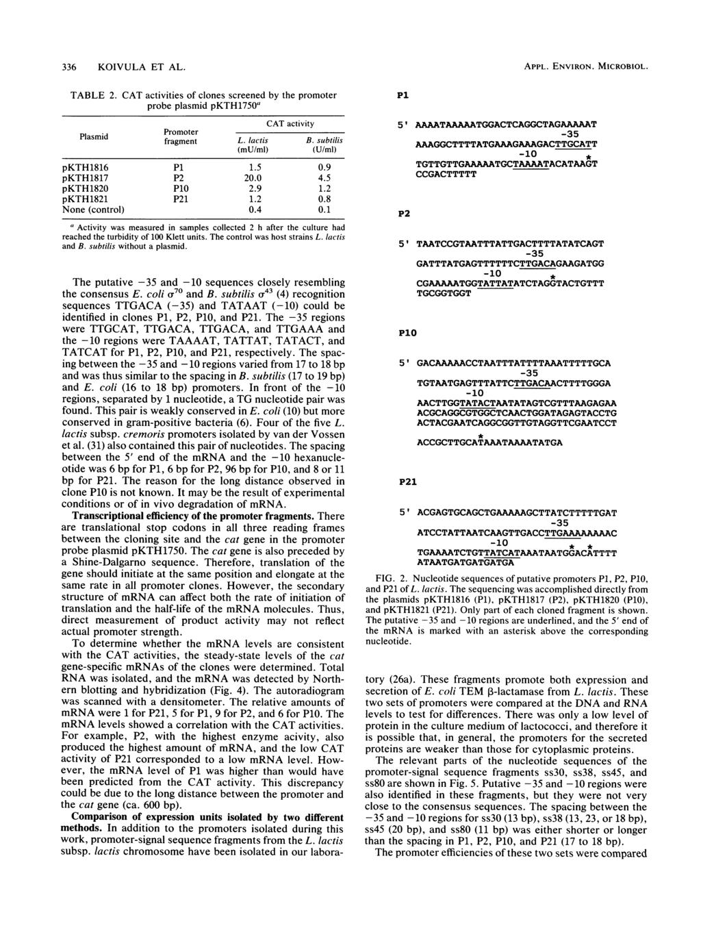 336 KOIVULA ET AL. TABLE 2. Plasmid CAT activities of clones screened by the promoter probe plasmid pkth1750a CAT activity Promoter fragment L. lactis B. subtilis (mu/ml) (U/mi) pkth1816 P1 1.5 0.