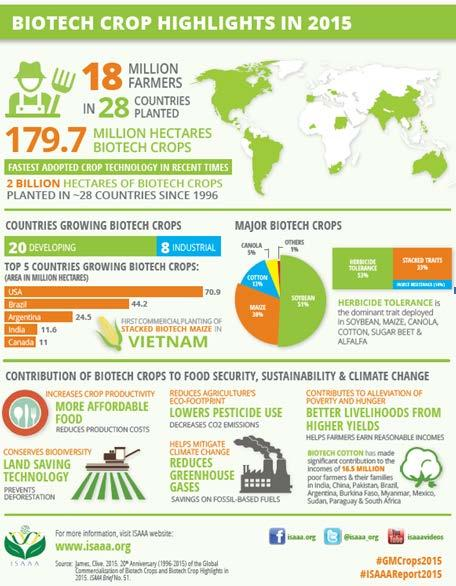 2015 ISAAA Report 20th Anniversary of the Commercialization of Biotech Crops The International Service for the Acquisition of Agri-biotech Applications (ISAAA) published its annual report on the