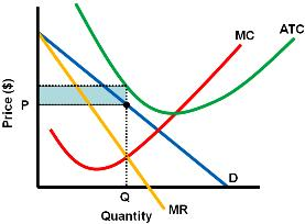 Economic Loss: P is below ATC Demand is elastic when MR is positive and inelastic when MR is negative.