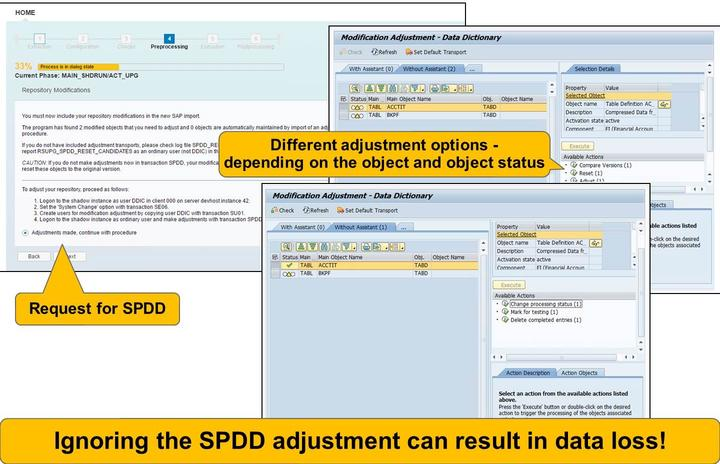 Lesson: SUM Procedure Figure 132: SUM Execution Part: Request for SPDD The SPDD