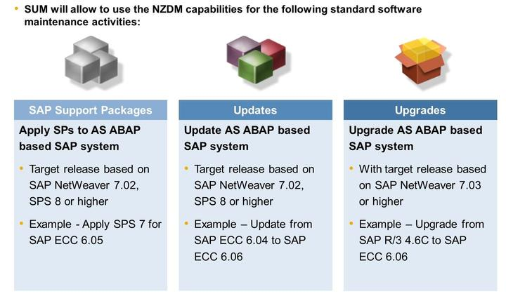 Unit 9: Downtime Figure 195: NZDM Capabilities for SAP Business