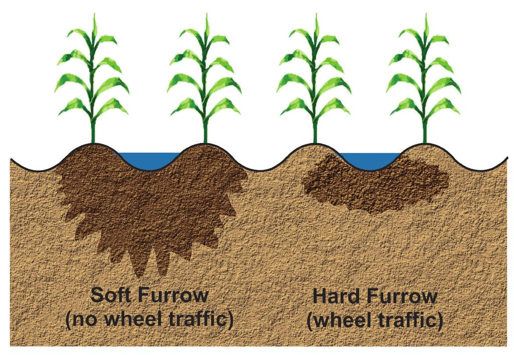 Section K: Managing furrow irrigation Soil compaction Soil compaction can significantly influence furrow irrigation effectiveness.
