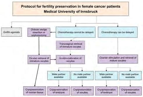 Gynecological Endocrinology and Reproductive Medicine Fig.
