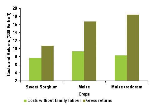 A cropping system-wise comparison of total expenses (excluding family labor) and gross revenues is shown in (Fig. 2).