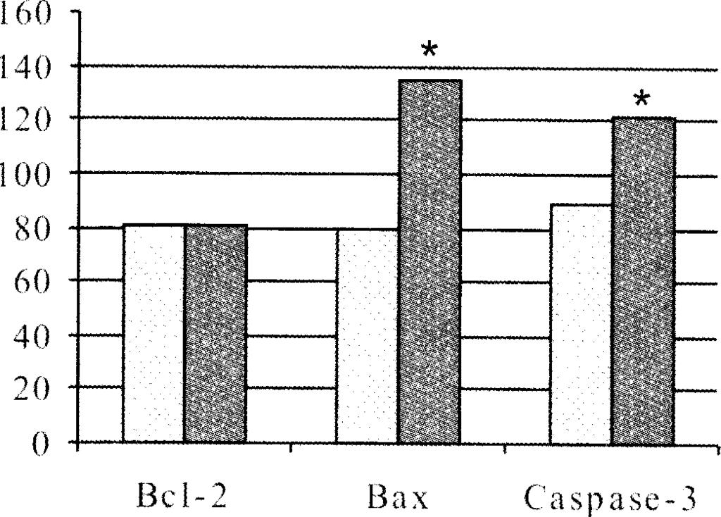 I Fig. 2 Intensity o f the im m une expression o f Bcl-2, Bax and Caspase-3 in the dermal capillary endothelial cells o f the skin rash papules and controls (in relative units). *p<0.