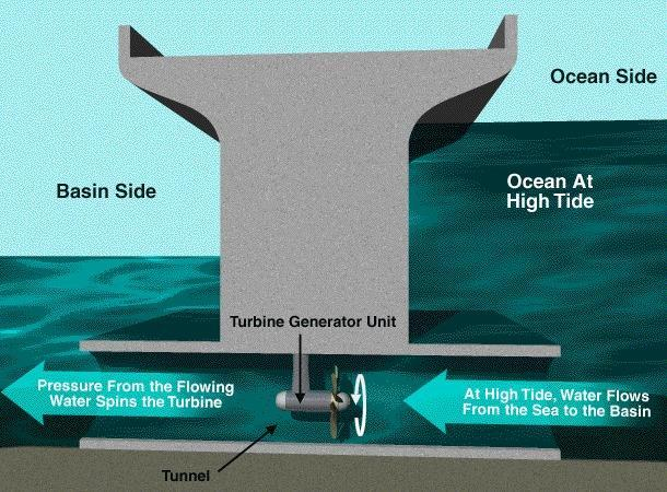 Tidal Energy textbook page 736 The constant movement of ocean water generates