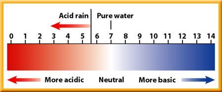 4) Acid Rain is the result of the reaction of air pollutants from the burning of fossil fuels with water in the