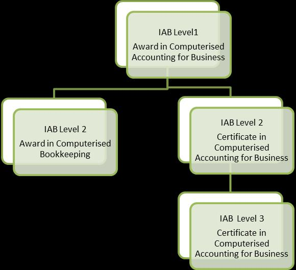 5 Statement of level This is a level 1 qualification as defined within the regulations of the Qualification and