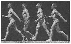 10] The human body can perform simple or composed (complex) movements, in its integrality or only by some of its parts.
