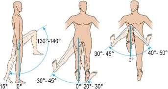 Chapter 4. Analysis methodology of the lower limb anatomical and biomechanical characteristics a) b) c) Fig. 4.18.