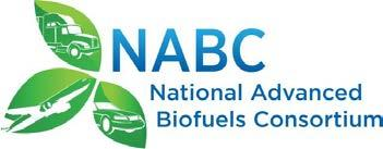 Questions Special Acknowledgement to National Advanced Biofuels Consortium (NABC) Led by the National Renewable Energy Laboratory Tom Foust (PI) National Alliance for