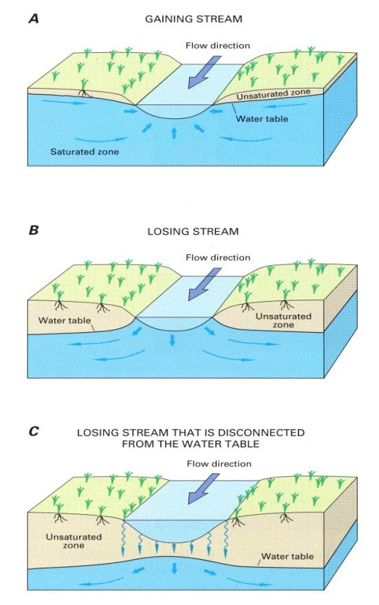 Under natural hydrologic conditions, some streams gain flow from groundwater (Figure 5-A, right) and other streams lose flow to groundwater (Figures 5-B and C, right).