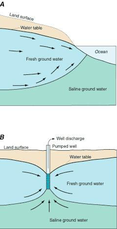 Impact: saltwater intrusion Coastal areas: freshwater flows over saltwater because it is less