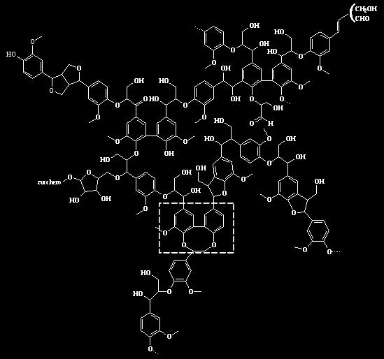 sinapyl alcohol, they could be considered main building blocks from the lignin polymer.
