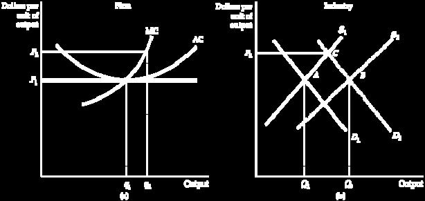 8 The Industry s Long-Run Supply Curve Constant-Cost Industry constant-cost industry Industry whose long-run supply curve is horizontal. FIGURE 8.