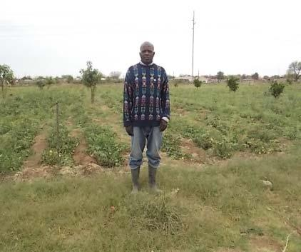 21: A farmer on his farm in 2013 (Source: Photo taken by researcher, 2013). Figure 4.21 shows the situation that one of the respondent was faced with in 2013.