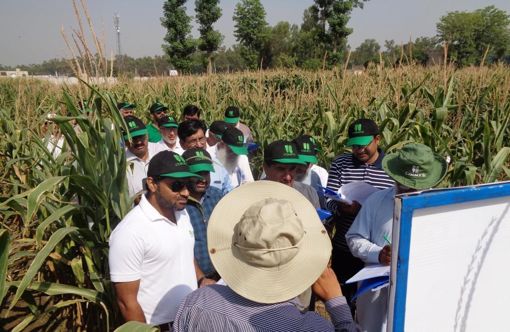 AGRICULTURAL INNOVATION PROGRAM (AIP) FOR PAKISTAN Maize Semi-Annual Report April-Sept, 2017 Submitted October 2017 AIP-maize is a public-private partnership to enhance Pakistan s maize sector