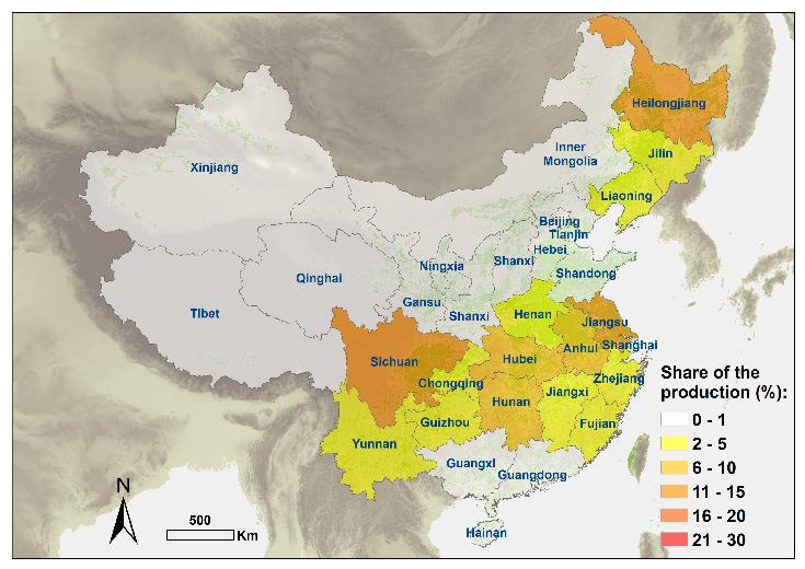 China Distribution of production Winter wheat cultivated in north china plain Maize cultivated in all provinces, in winter,